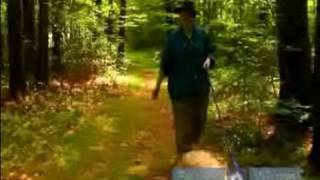 Walking Your Dog In The Woods : Hiking With Your Dog In Public Woods