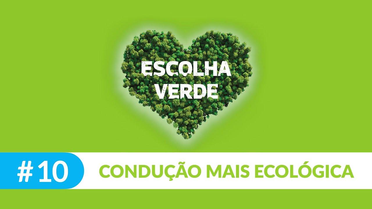 Seja um consumidor sustentável #10: poupe com condução ecológica