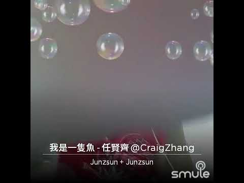 Wo shi yi zhi yu(mandarin song)
