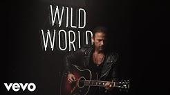 Kip Moore - Wild World (Audio)