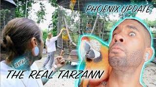 Rescued macaw update with The Real Tarzann! And tattooing his brother;)