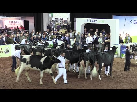 The action from UK Dairy Day
