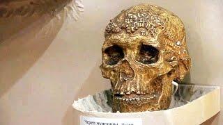 Запрещённое прошлое человечества(Запрещённое прошлое человечества ❖❖❖❖❖❖❖❖❖❖❖❖❖❖❖❖❖❖❖❖❖❖❖❖❖❖❖❖❖❖❖❖❖❖❖❖❖❖❖ Археоло..., 2014-07-13T10:25:58.000Z)