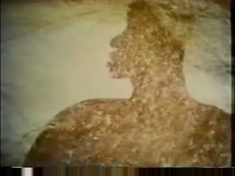 Video - Algerian Sahara - Rock painting was astonished by the world3