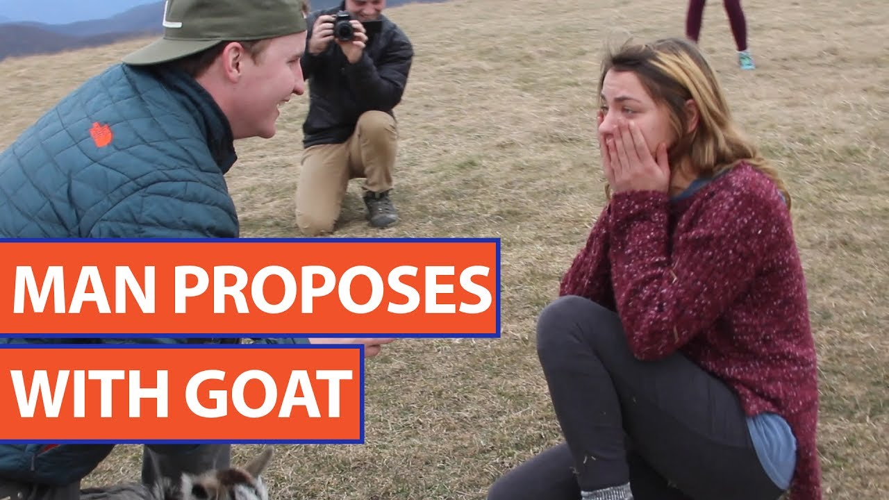Guy Proposes to Girlfriend With a Baby Goat Video 2017 | Daily Heart Beat