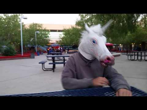 "Unicorn sighting ""100% real"" - YouTube  Unicorn sightin..."