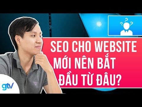Website Mới Nên SEO Trang Chủ Hay Bài Viết Trước?