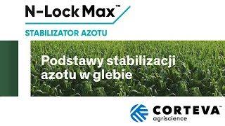 Podstawy stabilizacji azotu w glebie.