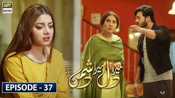 Mera Dil Mera Dushman Episode 37 - 25th June 2020 - ARY Digital Drama