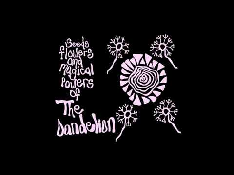 The Dandelion - Seeds Flowers and Magical Powers of The Dandelion (Full Album)