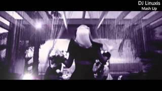 Madonna & Lady GaGa & Alexandra Burke - Poker Elephant Goes Wild (DJ Linuxis Mash Up)+Download