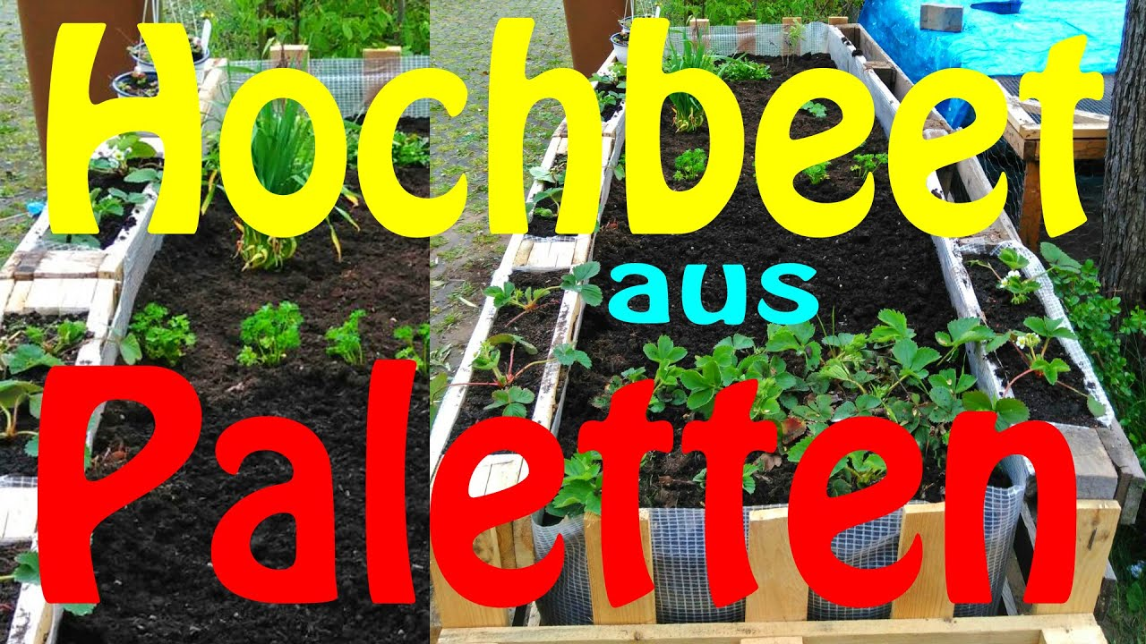 Gartenmobel Im Winter : Hochbeet DIY  aus Paletten  Marrys World  YouTube