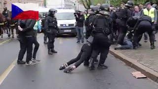 Tschechische Polizei greift gegen Zecken durch
