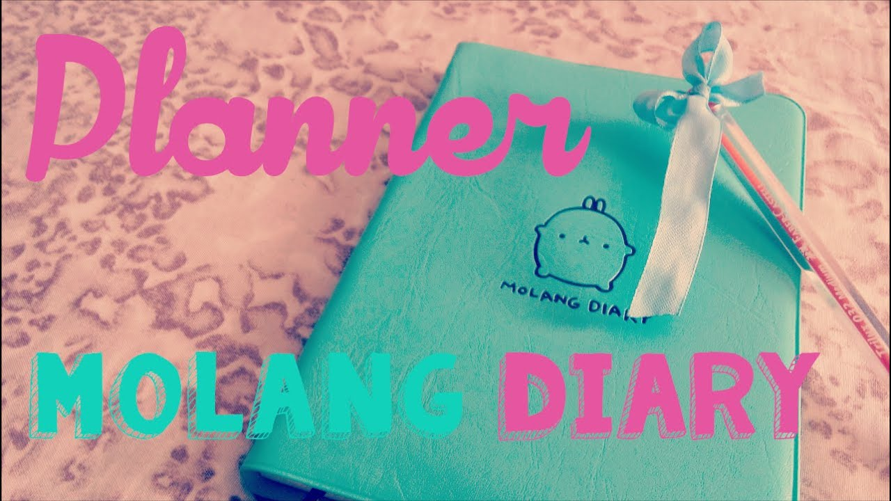 Planner Molang Diary-UNBOXING ALIEXPRESS - YouTube
