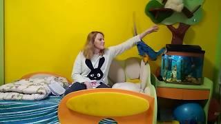 Выбор породы попугая : содержание большого попугая в квартире