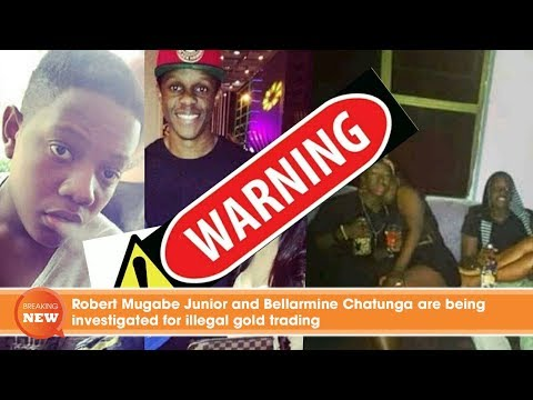 Robert Mugabe Junior and Bellarmine Chatunga are being investigated for illegal gold trading