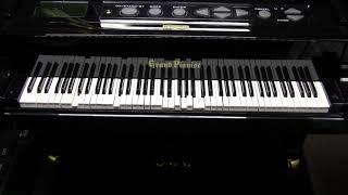 グランドピアニストにいろいろ弾かせてみます ヴィレッジピープル「イン...