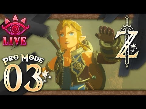 The Legend of Zelda: Breath of the Wild (Pro Mode) Part 3 - LIVE