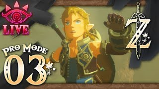 The Legend of Zelda: Breath of the Wild (Pro Mode) Part 3 - LIVE