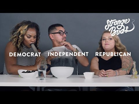 A Republican, Democrat, and Independent Smoke Weed Together | Strange Buds | Cut