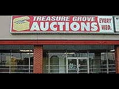 A Inside Look at Treasure Grove Auction House