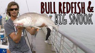 Giant Bull Redfish and Snook Fishing - MY BEST NET TOSS