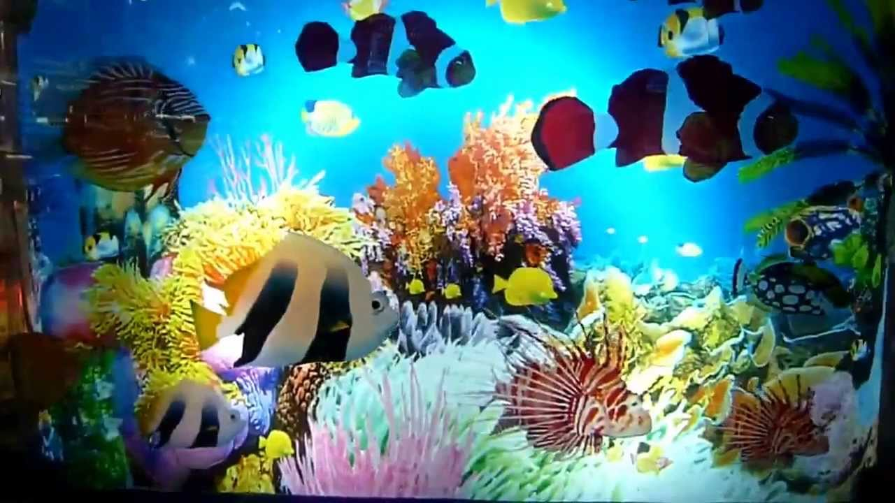 Мы прилагаем все усилия, чтобы понять каким вы хотите видеть ваш аквариум, выбираем стиль, размер, форму и внутренний декор.