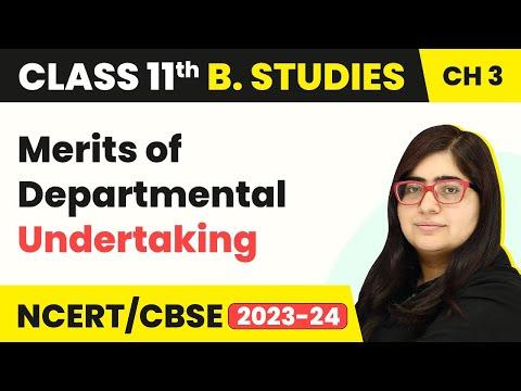 Departmental Undertaking - Merits | Class 11 Business Studies