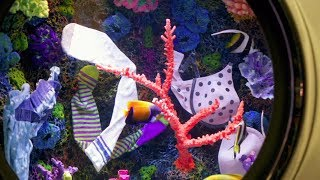 You Won't Want To Throw Your Dirty Undies In This Laundromat Aquarium!