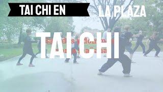 Tai Chi en la plaza