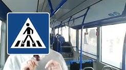 Der Zebrastreifen / Fixel der Bussi #112