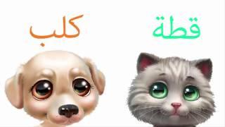 أصوات الحيوانات للأطفال | كلب و قطة |