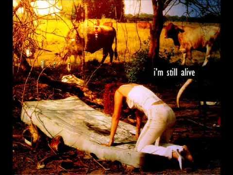 Tori Amos - Professional Widow (live)