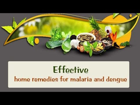 Symptoms of Dengue Fever | Home Remedy For Dengue | News Arasan from YouTube · Duration:  2 minutes 39 seconds