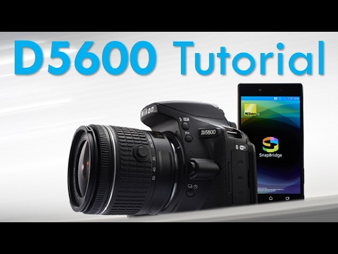 Nikon D5600 Overview Tutorial