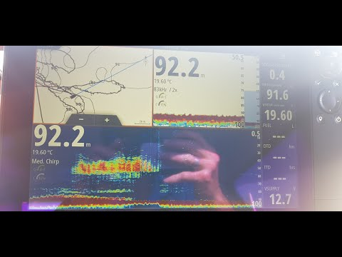 Zeikel 2-4PE Pocket Rocket Combo Jigging Kingfish Sea Storm Fishing