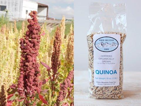 Co-op Food Haul ~ Colorado High Elevation Quinoa ~ 12/10/15