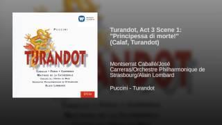 Turandot (1994 Remastered Version) , Act III, Scene 1: Principessa di morte! (Calaf, Turandot)