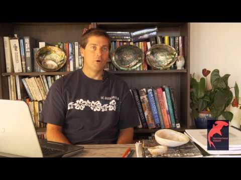 Careers in Diving - Interview with Marine Biologist, Matt Kay