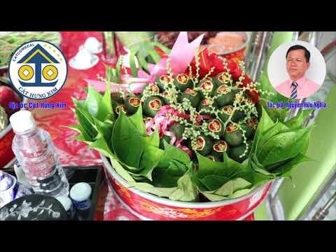 Karaoke Vọng cổ: CHÚC MỪNG HÔN LỄ - Dây Đào - Tác giả: Nguyễn Hữu Nghĩa