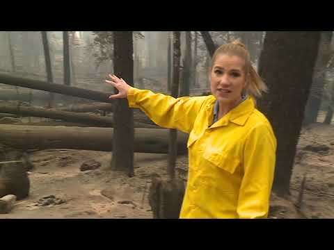 Surveying damage in Huntington Lake after the Creek Fire
