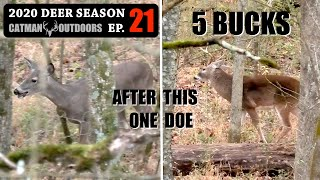 Thanksgiving Day Doe! Buck Bait on the Ground - 2020 Deer Season Ep 21