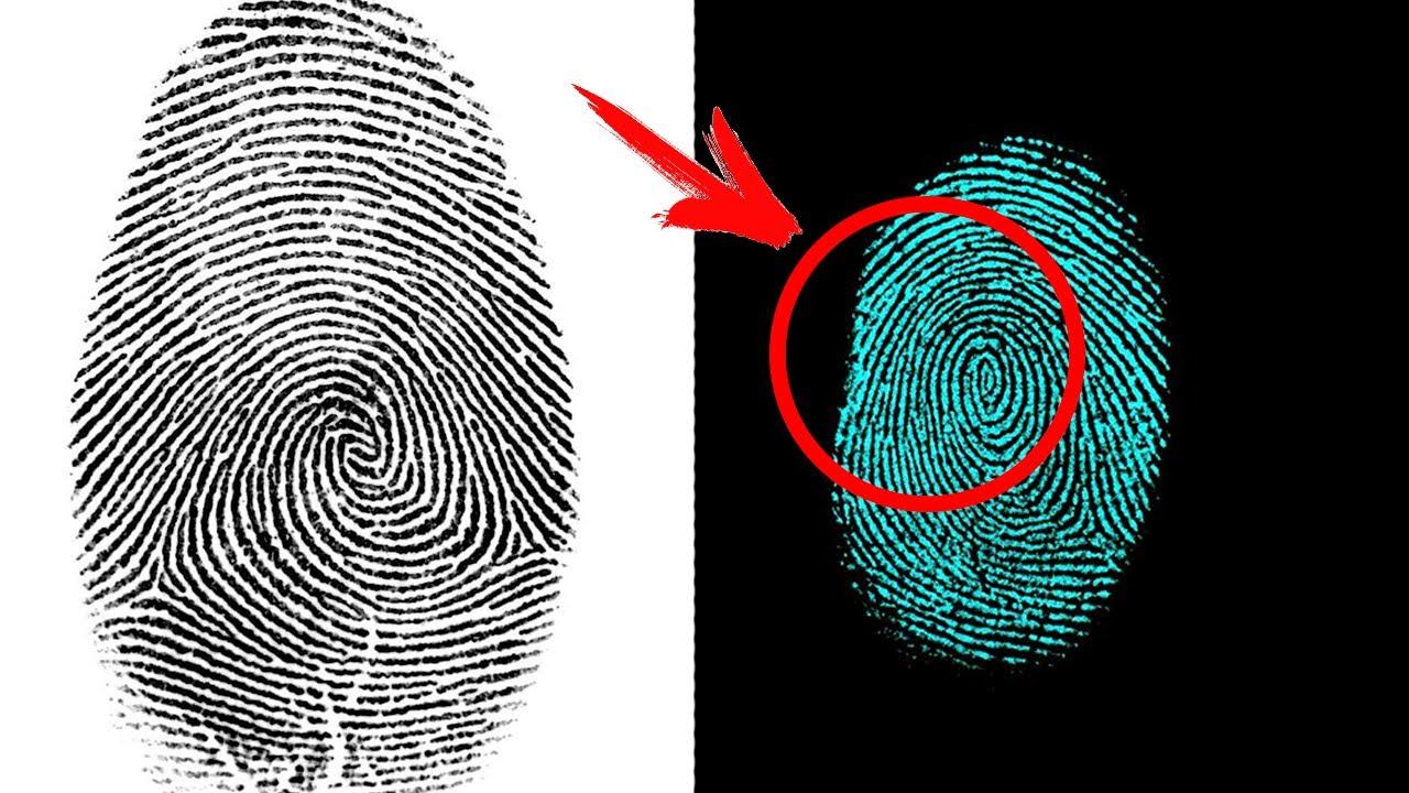 Что если отпечатки пальцев НЕ уникальны