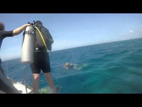 GoPro HERO 4 Black HONDURAS 2015 Utila Operation Wallacea Scuba Diving