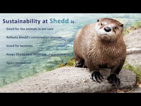 Sustainability at Shedd Aquarium