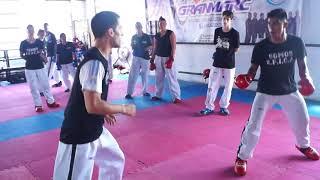 Taekwon-do ITF:  Estrategias y tacticas en Combate Deportivo