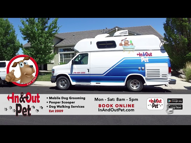 In & Out Pet :30 TV Commercial