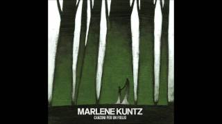 Marlene Kuntz - A fior di pelle