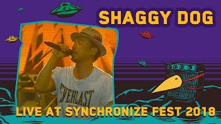 Download lagu Shaggy Dog LIVE @ Synchronize Fest 2018