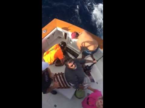 Dolphin Charter Fishing Charleston | Offshore Dolphin Charter Boat Fishing